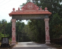 Alike Campus